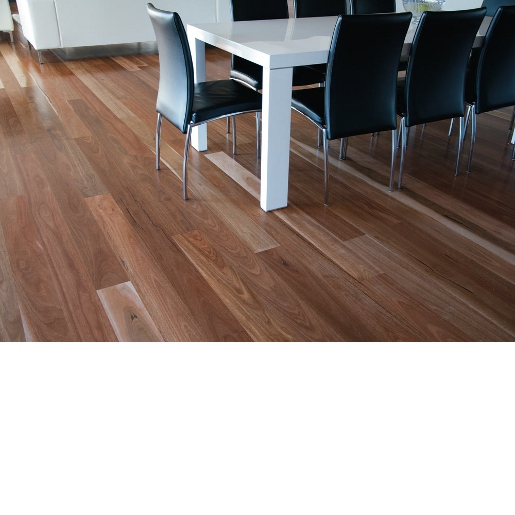 Spotted Gum Finish Engineered Brushed Select 7529
